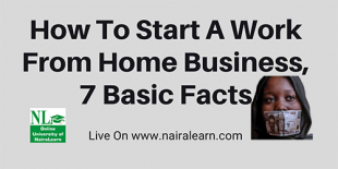 How To Start A Work From Home Business, 7 Basic Facts