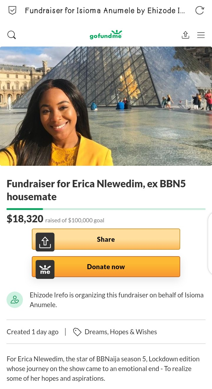 Fundraiser-for-Erica-Nlewedim