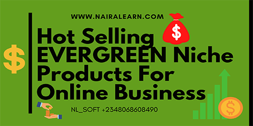 Hot-Selling-Evergreen-Niche-Products-For-Online-Business-nairalearn