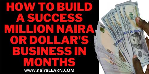 How-To-Build-A-Success-Million-Naira-Or-Dollar's-Business-In-Months,-NairaLEARN